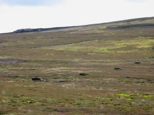 Grouse_butts_on_Horseshoe_Plain_-_geograph.org.uk_-_513765