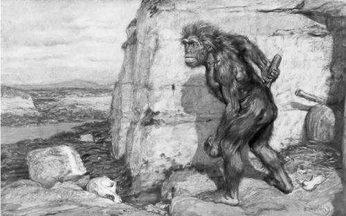 Krupka Neandertal